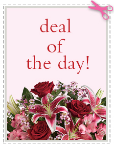 Deal of the Day in Greenville OH, Plessinger Bros. Florists